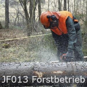 JF013 Forstbetrieb