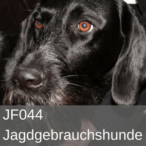 JF044 Jagdgebrauchshunde